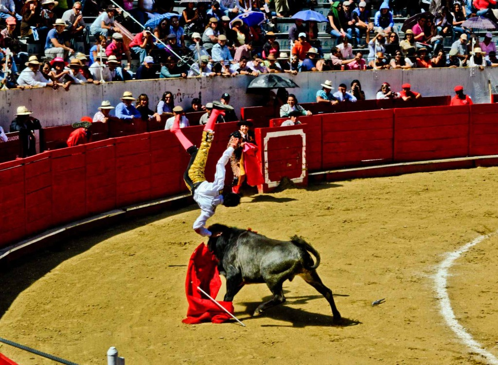 El Cuernazo: In which el Toro answers back to the challenge of el Torero...  Camera: Canon Rebel T1i Lens: Sigma 17-50mm, f/20 Exposure settings: 1/250 sec at f/20, ISO 400